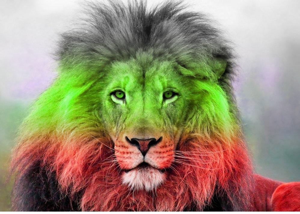 Българският Лъв